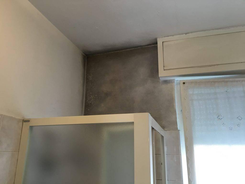 Muffa in bagno sopra il box doccia come fare per risolvere - Doccia con finestra dentro ...