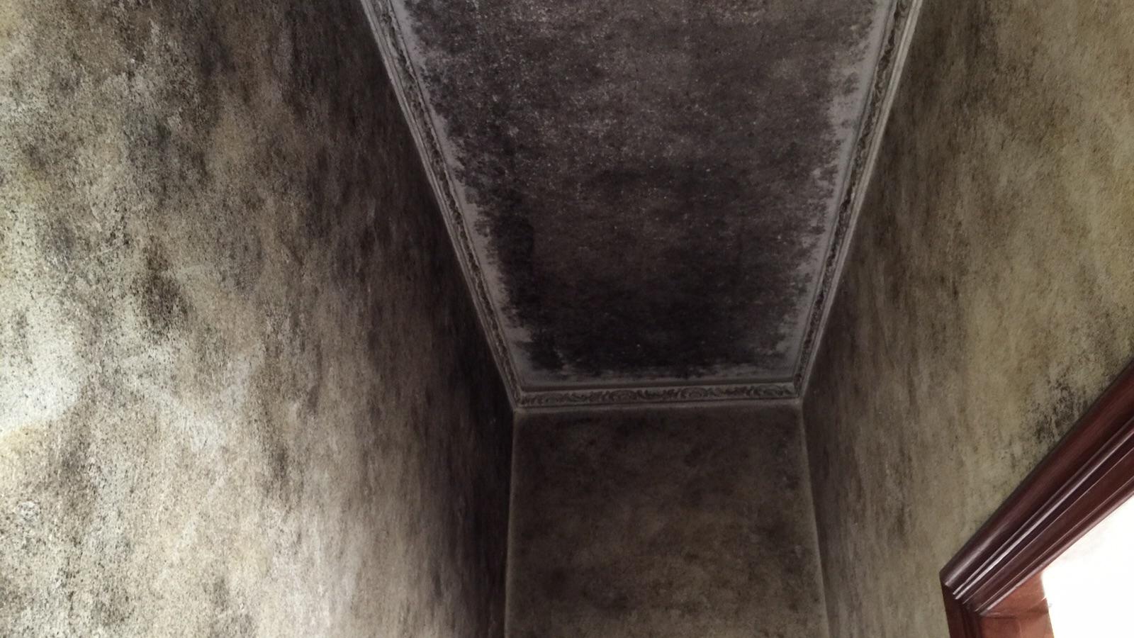 2015 08 27 - Come eliminare la muffa dalle pareti interne ...