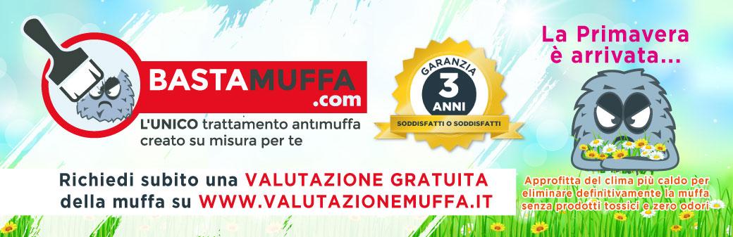 Blog Antimuffa