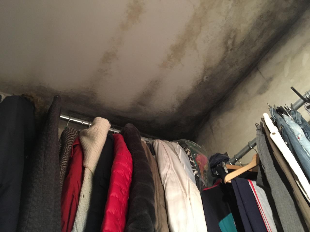 puzza di muffa cabina armadio
